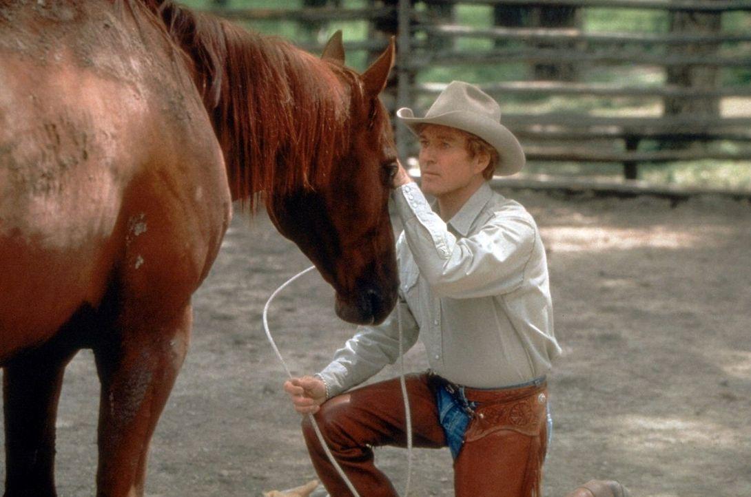 Der wortkarge Aussteiger Tom Booker (Robert Redford) hat die außergewöhnliche Gabe, sich in die Psyche von Pferden hineinzuversetzen ... - Bildquelle: Touchstone Pictures
