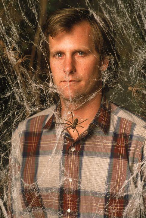 Der junge Arzt Dr. Ross Jennings (Jeff Daniels) hat sich mit seiner Familie in einer ländlichen Kleinstadt niedergelassen. Nach kurzer Zeit häufen s... - Bildquelle: Hollywood Picturest
