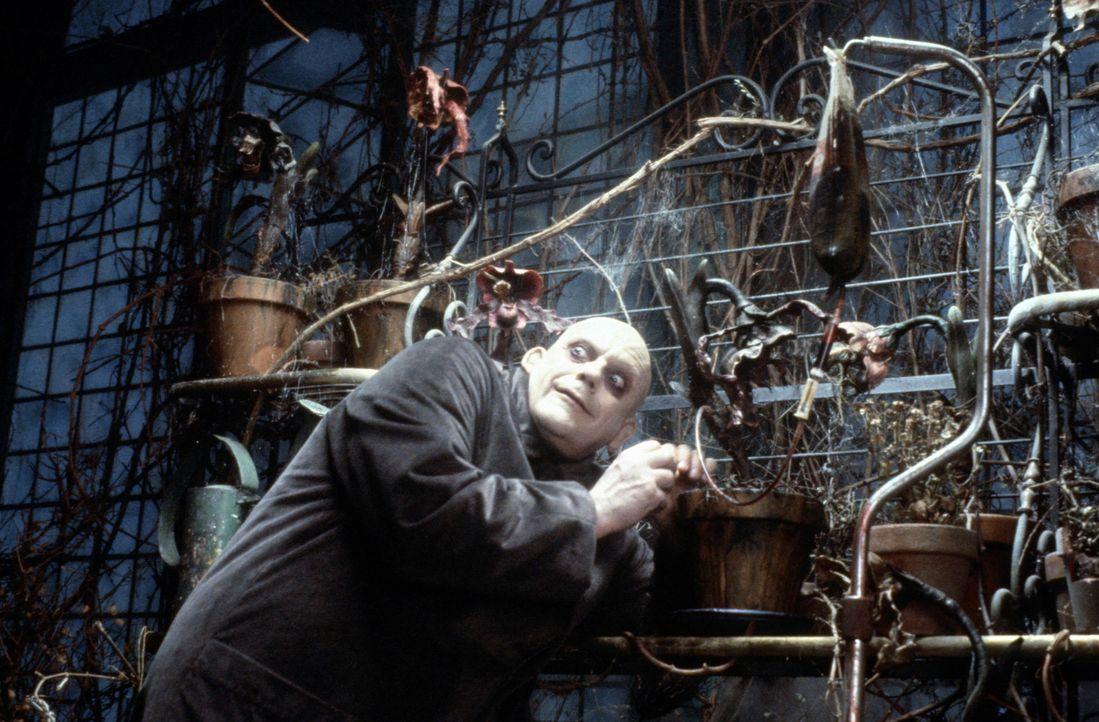 Ist der Betrüger Gordon Craven (Christopher Lloyd) vielleicht doch der wahre Fester? - Bildquelle: Paramount Pictures Global