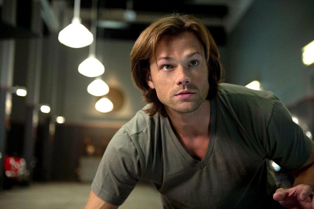 Für Sam (Jared Padalecki) ist der Bunker kein Zuhause, sondern lediglich ein Arbeitsplatz und das gefällt Dean ganz und gar nicht ... - Bildquelle: 2013 Warner Brothers