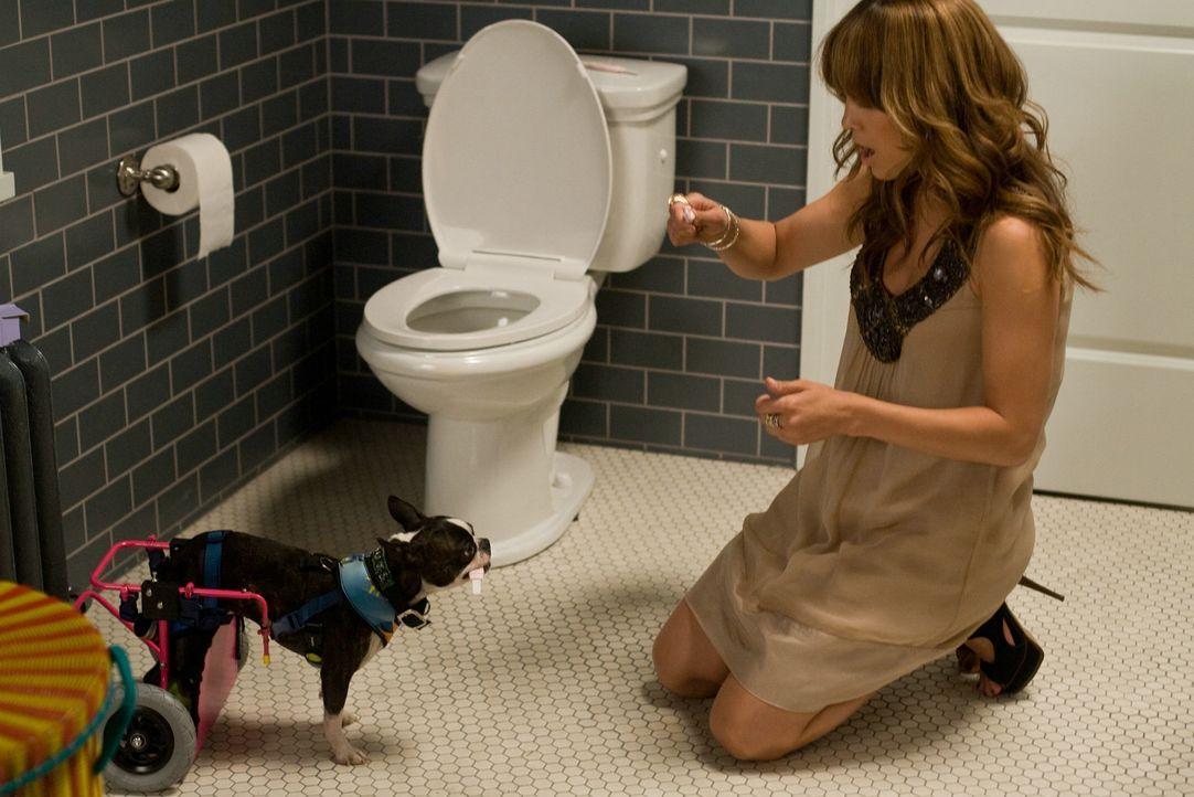 Als sie mit 30 ihren Traummann noch nicht gefunden hat, entscheidet sich Zoe (Jennifer Lopez), ihren Plan B durchzuführen. Das Schicksal hat jedoch... - Bildquelle: 2010 Concorde Filmverleih GmbH