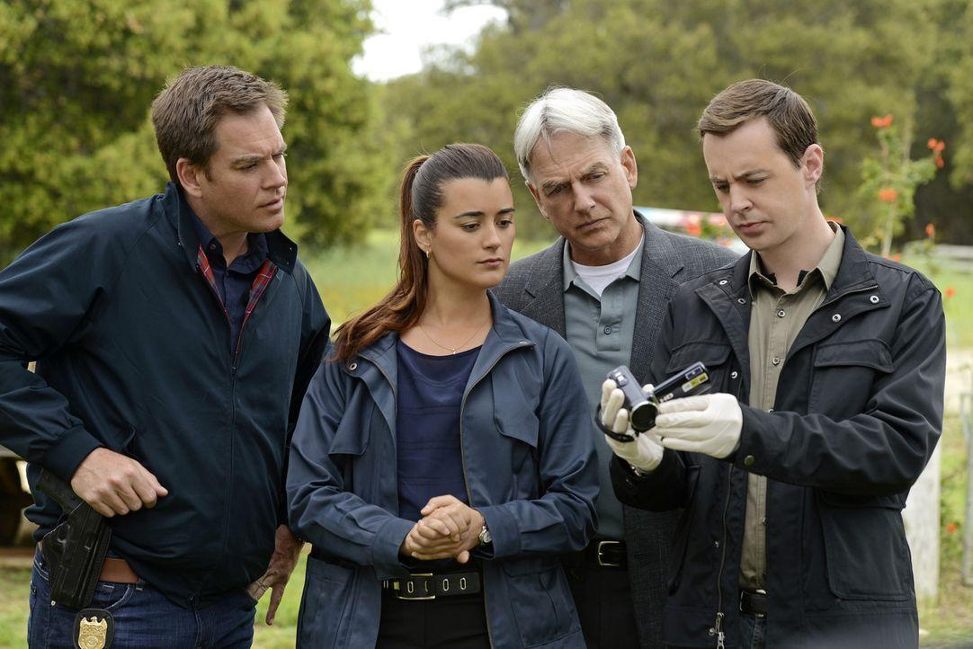 Ein neuer Fall wartet auf: Gibbs (Mark Harmon, 2.v.r.), Ziva (Cote de Pablo, 2.v.l.), McGee (Sean Murray, r.) und DiNozzo (Michael Weatherly, l.) ... - Bildquelle: CBS Television
