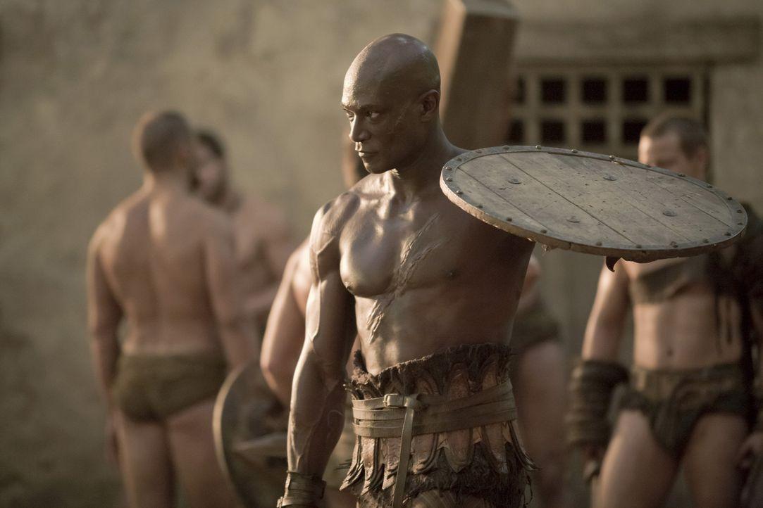 Sklave im Haus des Batiatus: Drago (Peter Mensah) ... - Bildquelle: 2010 Starz Entertainment, LLC