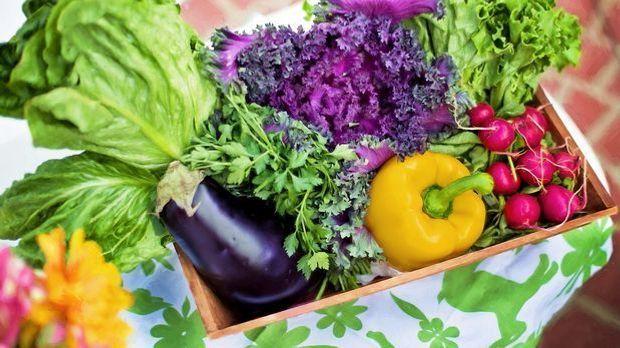 Herrlich bunt und gesund: Salat und Gemüse.