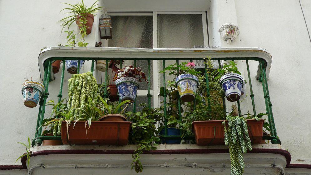 kuhle dekoration loungemobel balkon selber bauen, balkon einrichten: ideen zur verschönerung - sat.1 ratgeber, Innenarchitektur