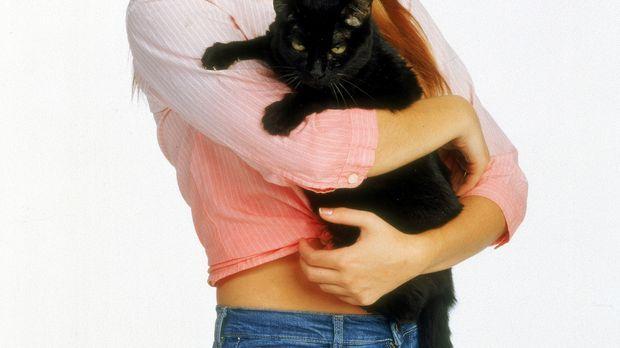 (6. Staffel) - Jung-Hexe Sabrina (Melissa Joan Hart) erkennt schnell, wie nüt...