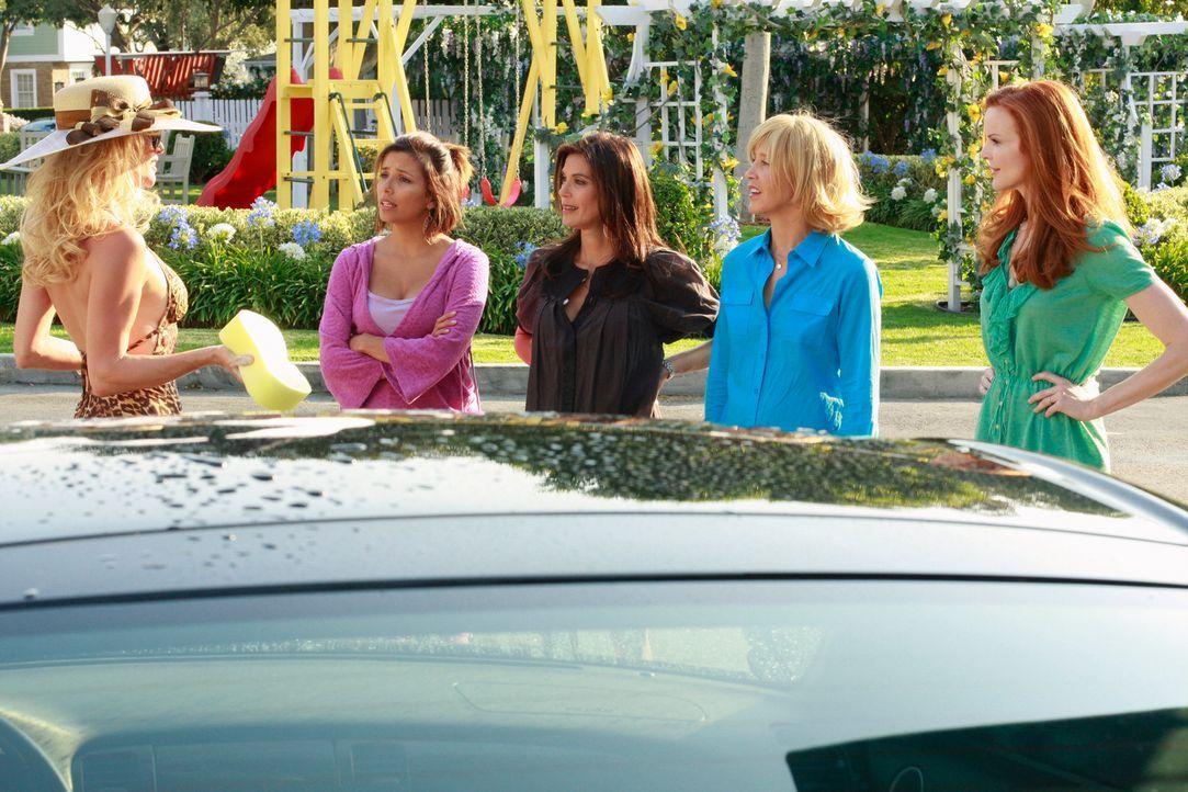 Fünf Jahre sind vergangen und es gibt viele Veränderungen bei Lynette (Felicity Huffman, 2.v.r.), Susan (Teri Hatcher, M.), Gabrielle (Eva Longoria,... - Bildquelle: ABC Studios