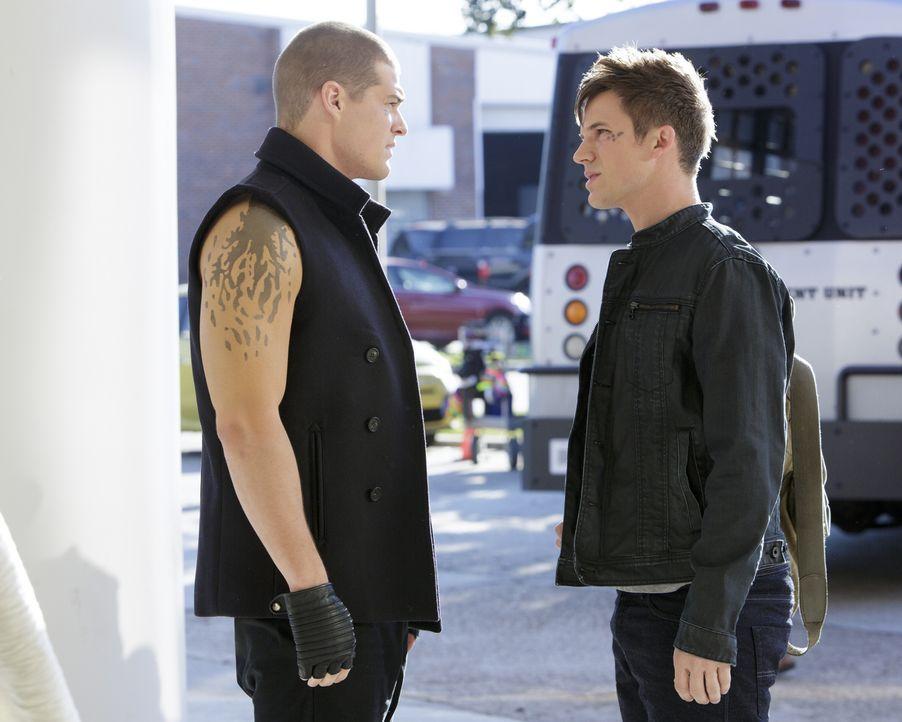 Während die Schüler der Marshall High wegen eines Unwetters in der Schule gefangen sind, müssen nicht nur Drake (Greg Finley, l.) und Roman (Matt La... - Bildquelle: 2014 The CW Network, LLC. All rights reserved.