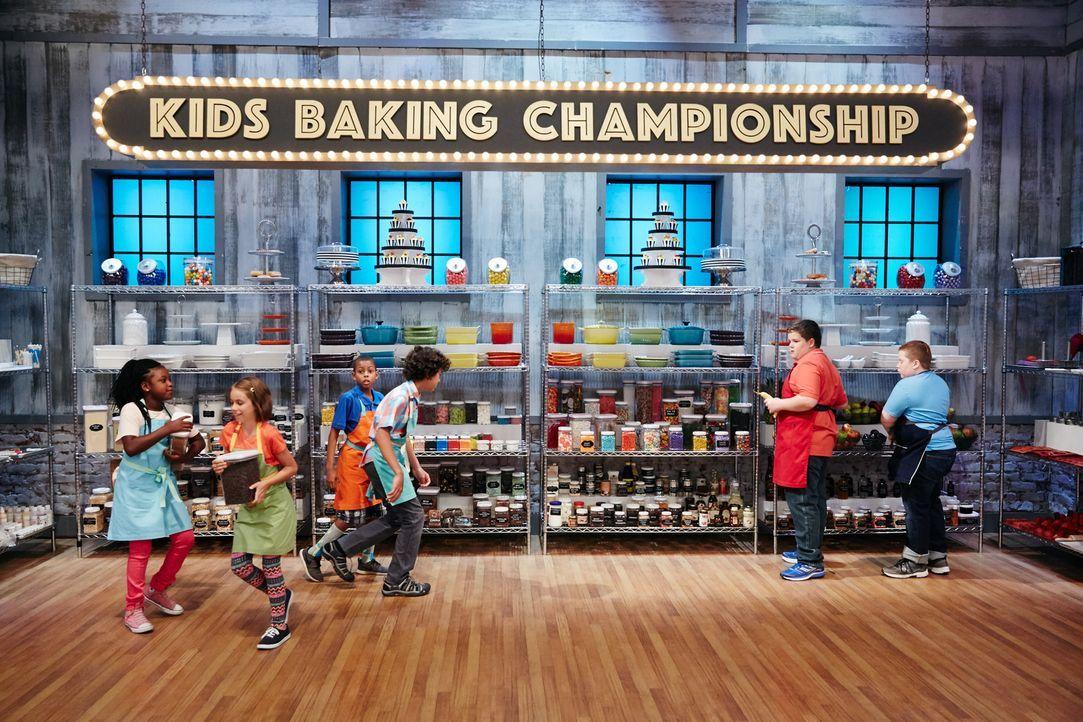Heute sollen die verbliebenen Jungbäcker mit den Zutaten alter Kuchen-Klassi... - Bildquelle: Patrick Wymore 2016, Television Food Network, G.P. All Rights Reserved./Patrick Wymore