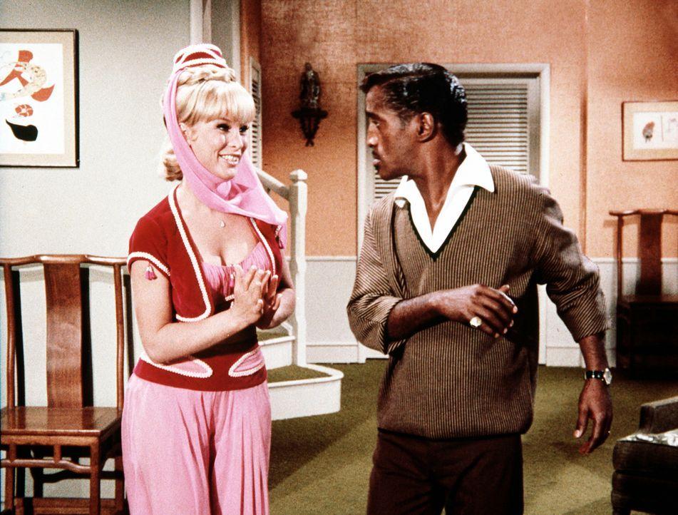 Jeannie (Barbara Eden, l.) zaubert den leibhaftigen Sammy Davis jr. (Sammy Davis jr., r.) in ihr Wohnzimmer, der davon zunächst gar nicht angetan is... - Bildquelle: Columbia Pictures