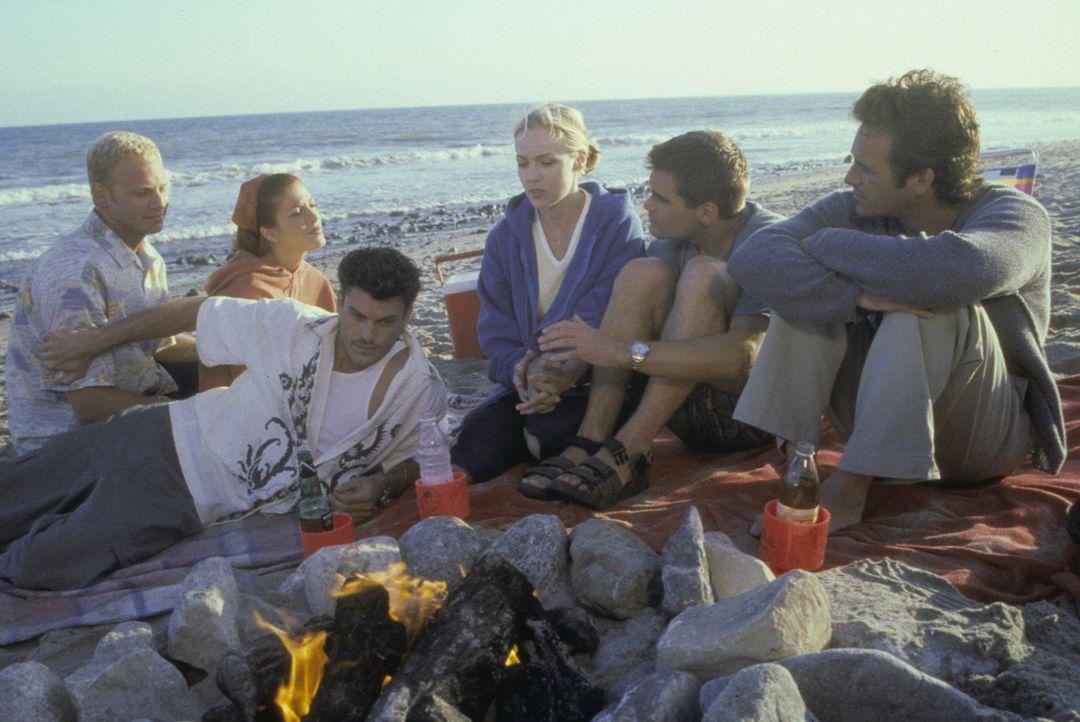 Viel hat sich verändert und jeder hat mit einigen mehr oder weniger großen Problemen zu kämpfen: Steve (Ian Ziering, l.), Donna (Tori Spelling, 2.v.... - Bildquelle: Paramount Pictures