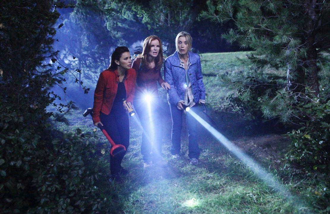 Damit ihre Tat nicht auffliegt, müssen Gabrielle (Eva Longoria, l.), Bree (Marcia Cross, M.) und Lynette (Felicity Huffman, r.) noch einmal los in d... - Bildquelle: ABC Studios