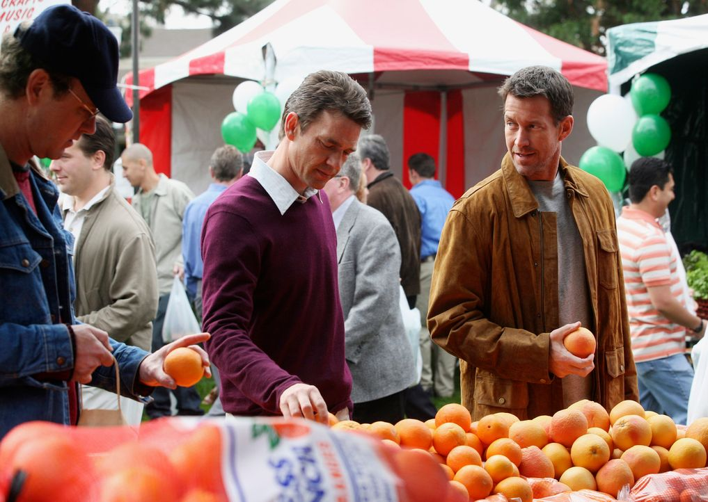 Während Ian (Dougray Scott, M.) und Mike (James Denton, r.) auf einem Wochenmarkt zufällig aufeinander treffen, haben ihre erste gemeinsame Enttäusc... - Bildquelle: 2005 Touchstone Television  All Rights Reserved