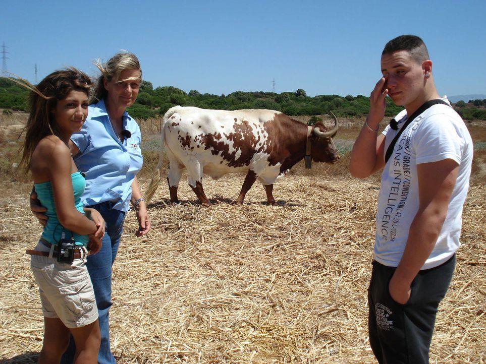 Die 17-jährige Shiva (l.) und der 15-jährige Nico (r.) werden auf eine Hacienda im andalusischen Torrecera geschickt. - Bildquelle: kabel eins