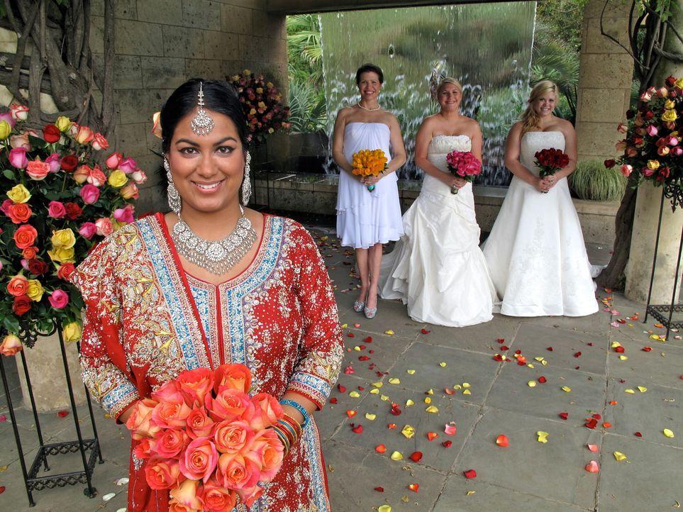Welche Braut wird die traumhaften Luxus-Flitterwochen gewinnen? Anna (r.), Nazia (l.), Samantha (2.v.l.) oder Shannon (2.v.l.)? - Bildquelle: 2011 Discovery Communications, LLC