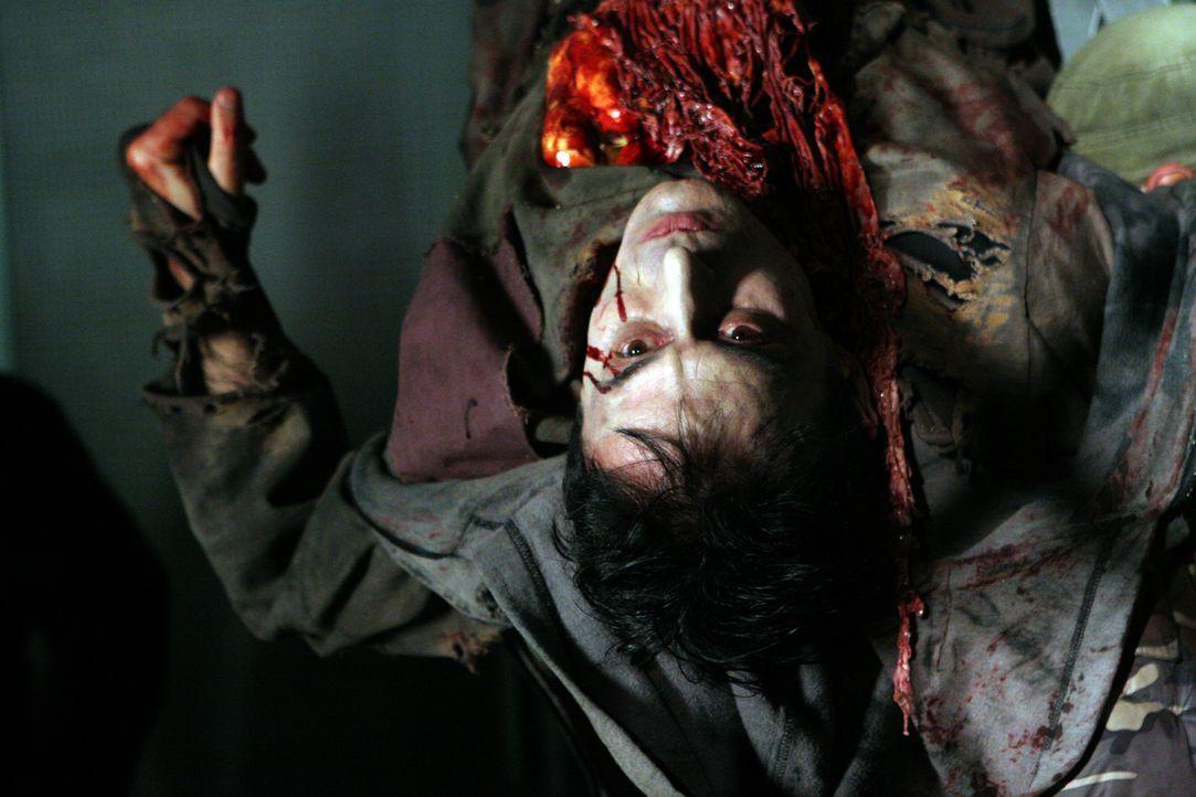 Nach einer Epidemie haben sich weite Teile der Weltbevölkerung mit einem Virus infiziert, der Menschen zu Vampiren macht - mit einem unstillbaren Hu... - Bildquelle: 2008 Worldwide SPE Acquisitions Inc. All Rights Reserved.