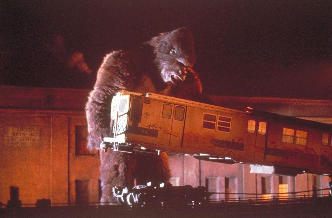 Schon bald kommt es zu einer Katastrophe: King Kong bricht aus Liebe zur schönen Dwan aus, bringt die Frau in seine Gewalt und läuft in den Straß... - Bildquelle: Paramount Pictures