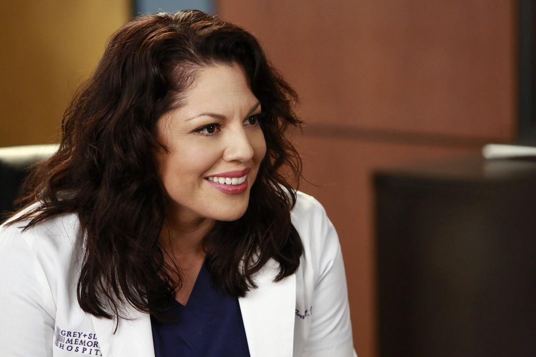 Ist das Opfer der Begierde von Technik-Vertreterin Jenna: Callie (Sara Ramirez) ... - Bildquelle: ABC Studios