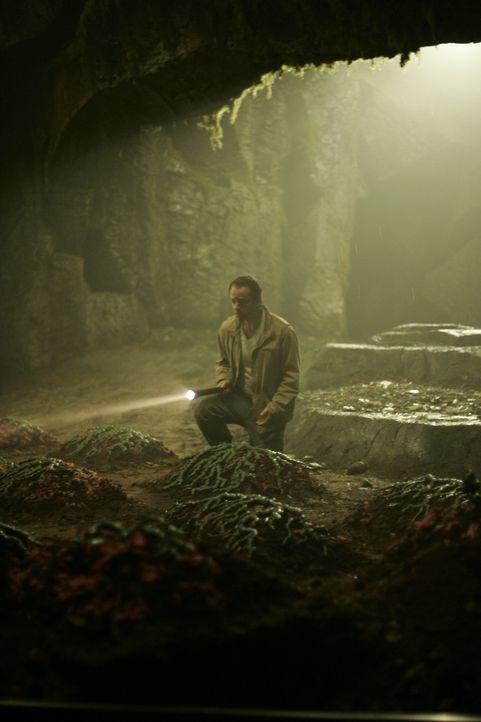Tief unter der Stadt, in ihrem Entwässerungssystem entdeckt Professor Lloyd Walker (Gil Bellows) eine mysteriöse Anpflanzung einer pilzähnlichen... - Bildquelle: Hallmark Entertainment