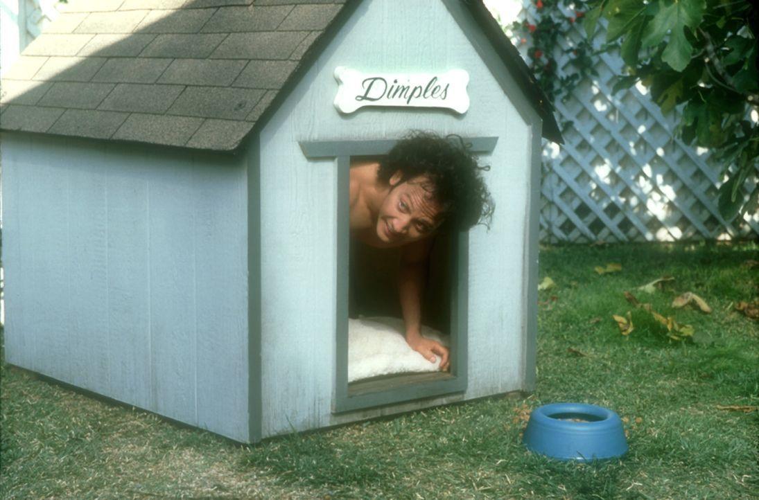 Eines Tages findet sich der kraftlose, ängstliche Marvin (Rob Schneider) als animalisches, todesmutiges Wesen wieder ... - Bildquelle: 2003 Senator Film