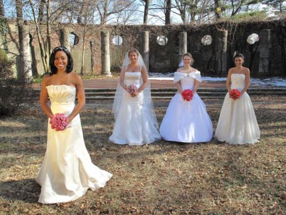Vier Bräute treten an, im Wettkampf um das schönste Hochzeitsfest: Anastasia (2.v.l.), Amber (l.), Jena (2.v.r.) und Kristin (r.) - Bildquelle: 2009 Discovery Communications, LLC