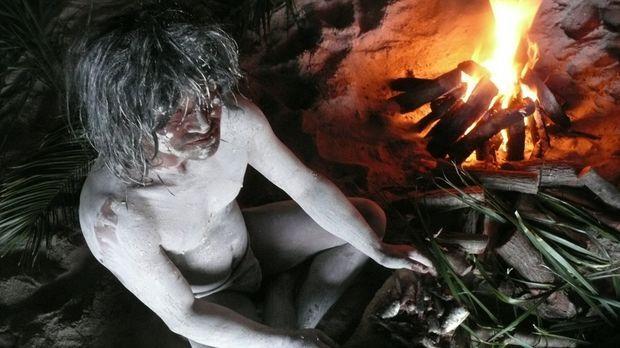 In einer Höhle auf Palau - einer abgelegenen Inselkette im Pazifik - entdeckt...