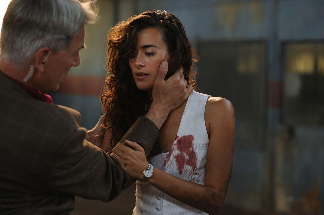 Ziva (Cote de Pablo, r.) gerät in Lebensgefahr, als sie undercover einen Serienkiller jagt, der untreue Ehefrauen ermordet: Gibbs (Mark Harom, l.)... - Bildquelle: CBS Television