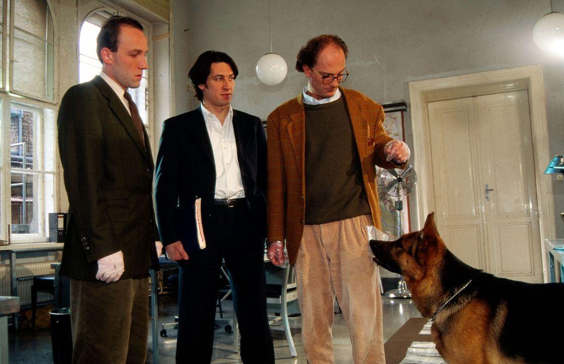 Der Untersuchungsrichter (Levin Lange, r.) ist von Rex' Spürhund-Qualitäten beeindruckt. Unter verschiedenen Beweisstücken findet Rex die richtige D... - Bildquelle: Ali Schafler Sat.1