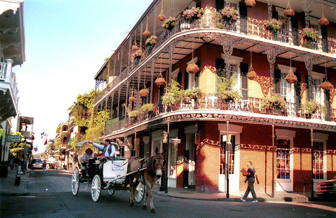 New-Orleans-10-dpa-gms - Bildquelle: dpa/gms