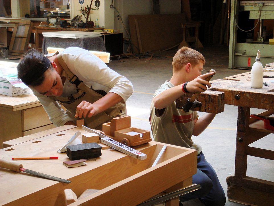 Die beiden Geschäftsführer der Schreinerei Padati in Dreis bei Trier suchen einen Lehrling. Daniel Haas, 19, Niklas Adams, 15 und Natalie Gebel, 2... - Bildquelle: kabel eins
