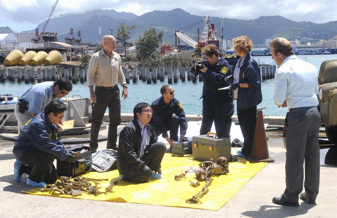 Ein neuer Mordfall beschäftigt das Team: Joe (Terry O'Quinn, 3.v.l.), Bergman (Masi Oka, 4.v.l.) und Danny (Scott Caan, r.) ... - Bildquelle: TM &   CBS Studios Inc. All Rights Reserved.