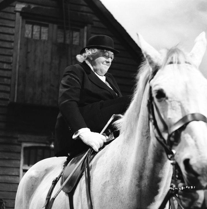 Schon bald hat Miss Marple (Margaret Rutherford) auch die Verdächtigen ausgemacht. Die Verwandten des Verstorbenen waren auf sein Vermögen aus. Doch... - Bildquelle: Warner Bros.