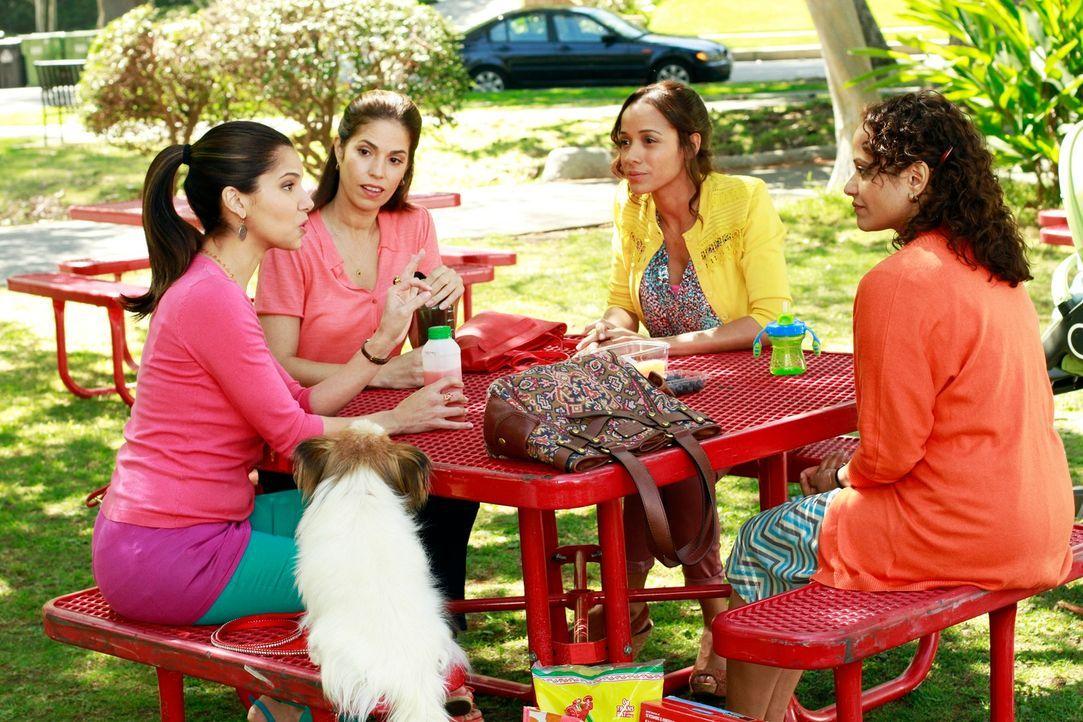 Arbeiten alle als Hausmädchen in Beverly Hills - doch jede aus ihrem ganz speziellen Grund: Marisol (Ana Ortiz, 2.v.l.), Rosie (Dania Ramirez, 2.v.r... - Bildquelle: ABC Studios