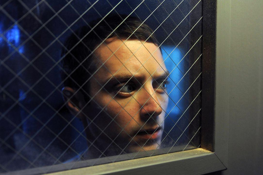 In der psychiatrischen Anstalt bekommt Ryan (Elijah Wood) oft Besuch von seiner Nachbarin Jenna, die jedes Mal ihren Hund Wilfred mitbringt - und ge... - Bildquelle: 2011 FX Networks, LLC. All rights reserved.