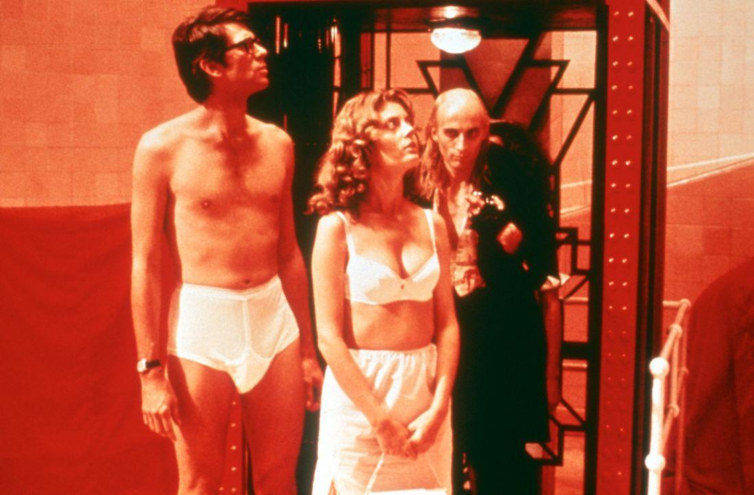 Der Diener Riff Raff (Richard O'Brien, l.) führt Brad Majors (Barry Bostwick, r.) und seine Verlobte Janet Weiss (Susan Sarandon, M.) in ihr Schlafg... - Bildquelle: 1975 Houtsnede Maatschappi N.V.