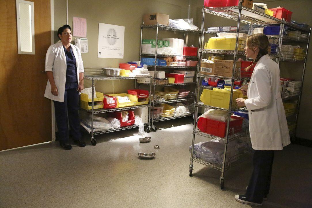 Callie (Sara Ramirez, l.) macht ihrem Ärger bei Meredith (Ellen Pompeo, r.) Luft, obwohl die Ärztin mit ihren eigenen Problemen zu kämpfen hat ... - Bildquelle: ABC Studios