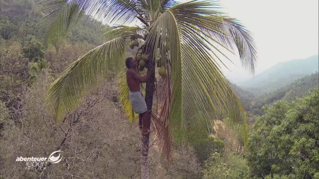 Abenteuer Leben - Abenteuer Leben - Mittwoch: Der Weg Der Kokosnuss