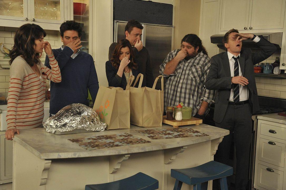 Ein Thanksgiving mit besonderen Überraschungen: (v.l.n.r.) Robin (Cobie Smulders), Ted (Josh Radnor), Lily (Alyson Hannigan), Marshall (Jason Segel... - Bildquelle: 20th Century Fox International Television