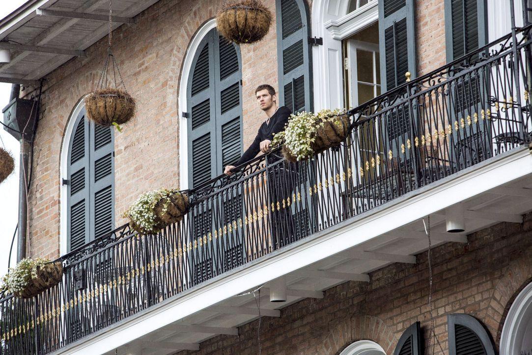 Klaus auf dem Balkon