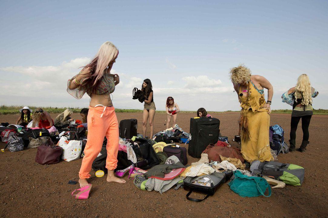 """Egal, wie der Sommer in Deutschland wird - für die zwölf """"Reality Queens"""" wird es heiß, sehr heiß. Für sie geht es auf Safari in Tansania und a... - Bildquelle: Guido Ohlenbostel ProSieben"""