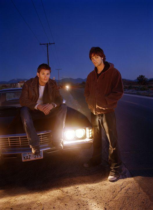 (1. Staffel) - Die beiden Brüder Sam (Jared Padalecki, r.) und Dean Winchester (Jensen Ackles, l.) kurven mit ihrem 69er Chevy Impala durch's Land,... - Bildquelle: Warner Bros. Television
