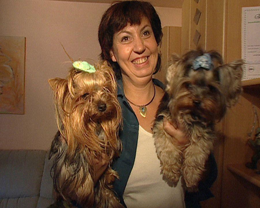 """Wenn Michaela Sroka (44) von """"Conditioner"""" und """"Shampoo"""" spricht, denkt sie dabei an ihre drei Yorkshire Terrier Pepsy, Lavinja und Atos. Sie möcht... - Bildquelle: ProSieben"""