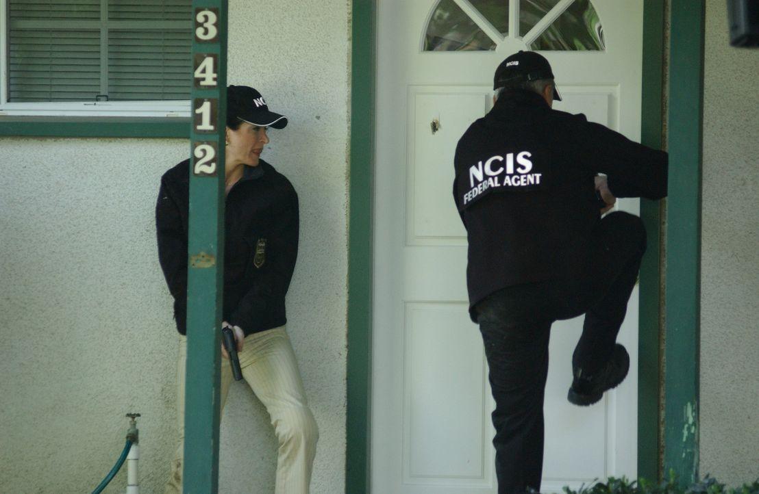 Im Einsatz: Kate (Sasha Alexander, l.) und Gibbs (Mark Harmon, r.) ... - Bildquelle: CBS Television