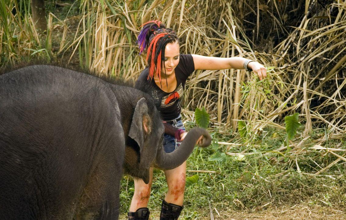 Macht sich auf, skrupellosen Elfenbeinjägern das Handwerk zu legen: Taffie (Monique van der Werff) ... - Bildquelle: Jan van den Nievwenhuijzen